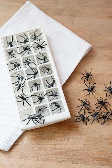 cubo de gelo com aranhas
